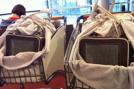 Duas trouxas no aeroporto de Paris.